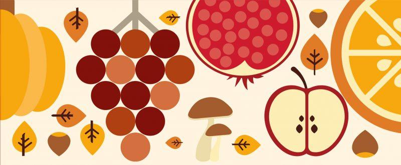 Sagra del Fungo Cardoncello | Puglia 365